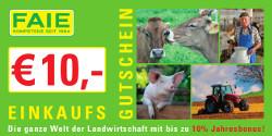 FAIE-Gutschein_250px