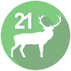 FAIE-Adventkalender-Symbol-21-transparent_100px