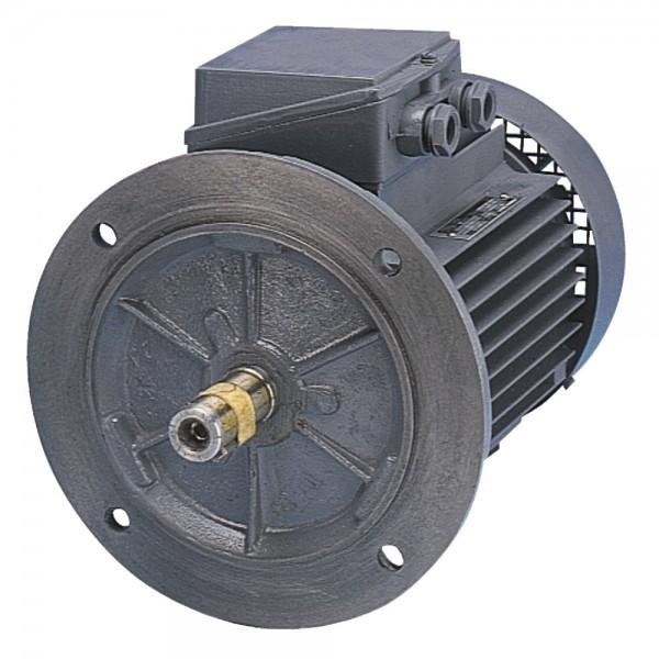 Elektromotor zum Anflanschen von Hydraulikpumpen